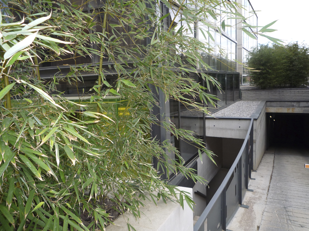 Diseño de jardines integrales en Barcelona. Barandillas para jardines integrales hotel Eurostars.