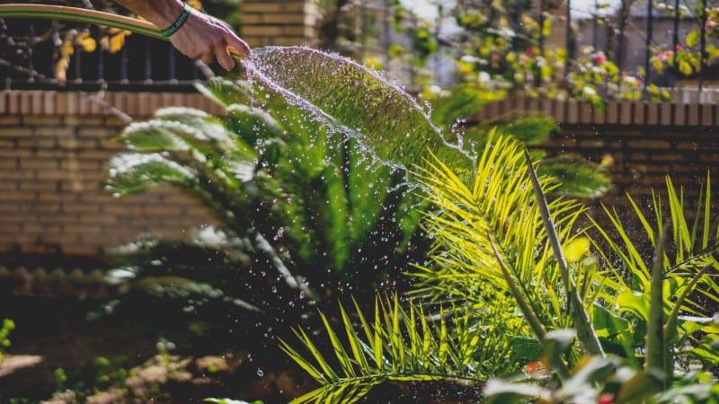 mantenimiento jardin beneficios