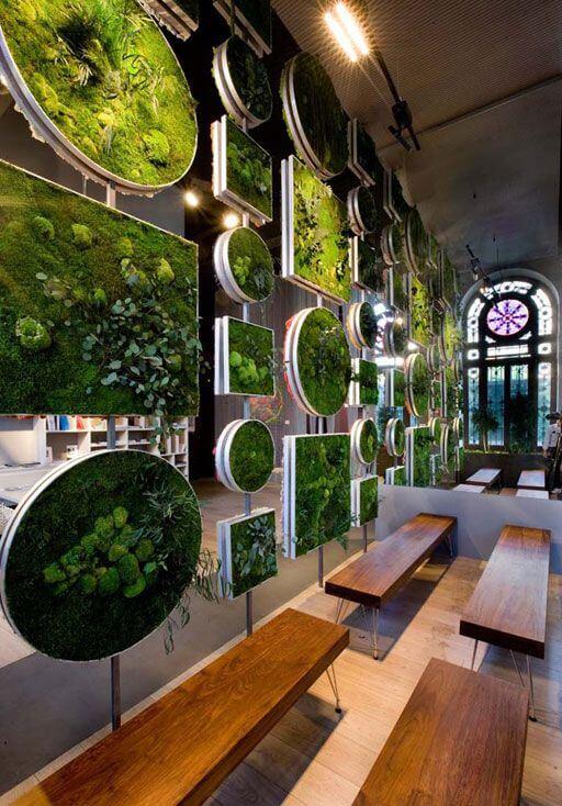 jardines verticales de interior ofrecen increíbles resultados a la vez que aprovechan y maximizan el espacio.
