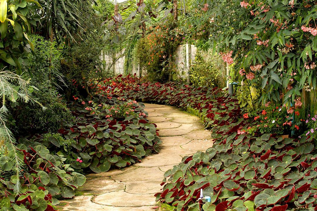 Jardín sostenible y de bajo mantenimiento